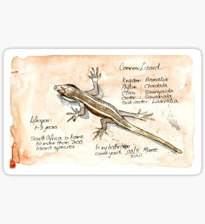 African Striped Skink - Not so easy! Sticker