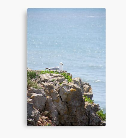 Cliff top lookout Canvas Print