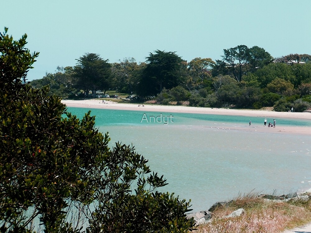 Inverloch Beach by Andyt