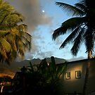 Hawaii Moon by GreyCard