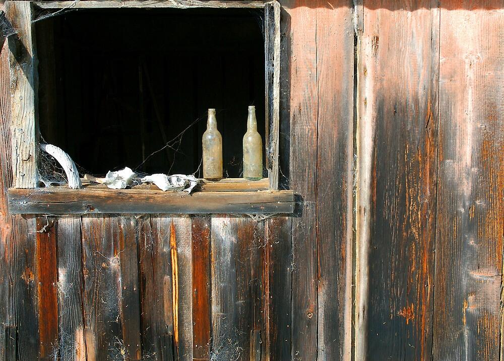 Abandoned villiage in Hawaii by GreyCard