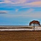 Beach Near Jaco, Costa Rica by Wanda Staples