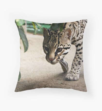 Here, Kitty? Throw Pillow