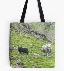 Lake District Icon...The Next Generation Tote Bag
