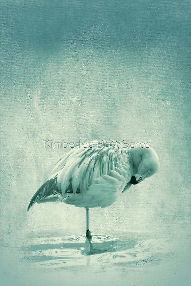 Flamingo Blues by KBritt