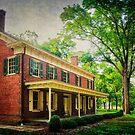 The John Stover House by Debra Fedchin