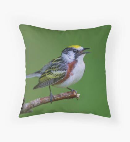 Chestnut sided warbler Throw Pillow