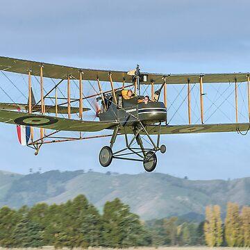 Royal Aircraft Factory F.E.2b by baji