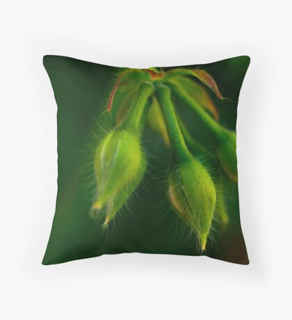 with hairs on her chinny chin chin Throw Pillow