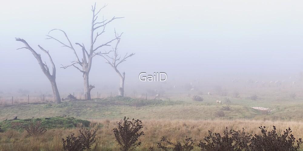 In the Mist by GailD