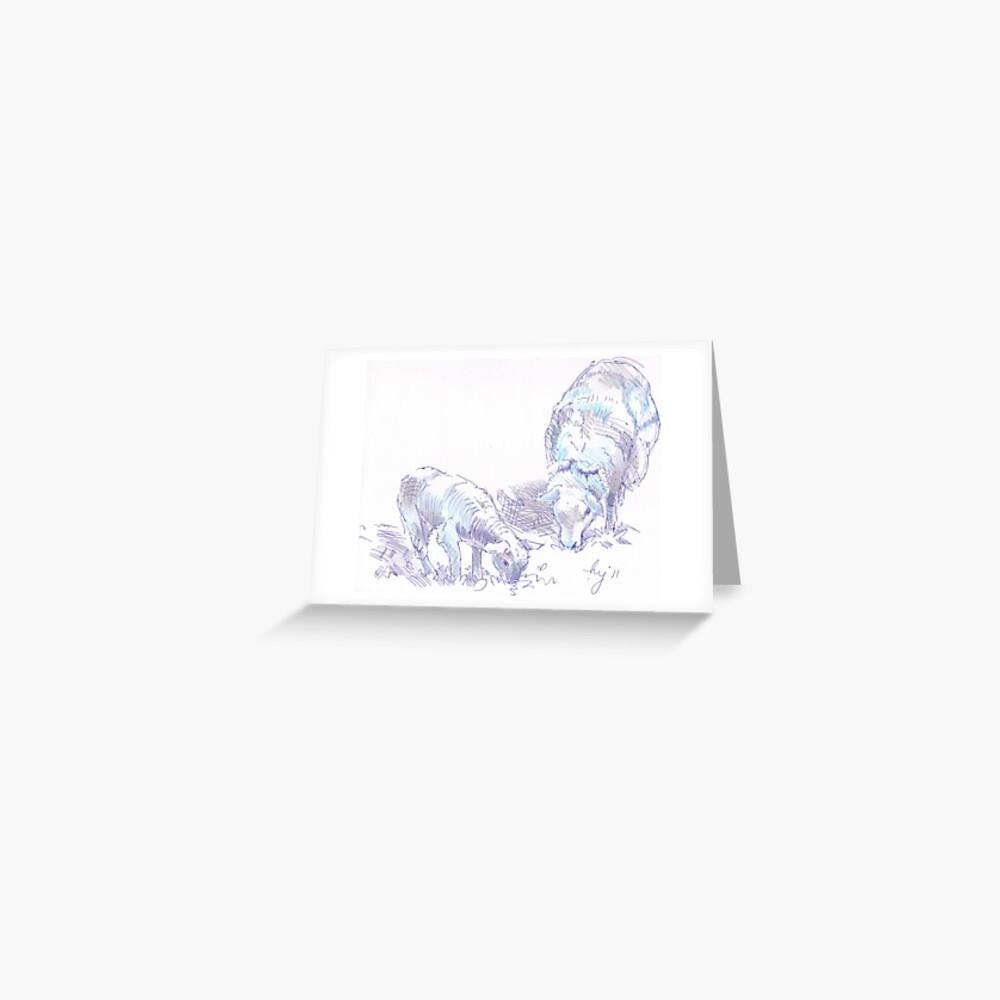 """Sheep and Lamb Grazing Pencil & Pen Drawing"" Greeting ..."