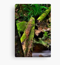 Green Log Canvas Print