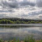 Cool Lake by Michael Degenhardt