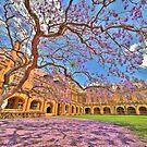 Jacaranda at the University of Sydney by Rod Kashubin
