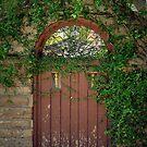 Garden Gate by Kerry Loggins