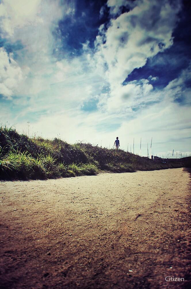 Dune Walk by Nikki Smith
