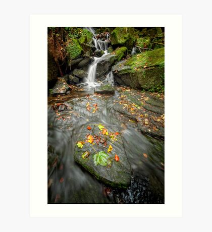 Autumn Waterfall Art Print
