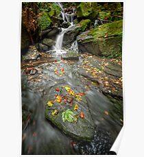 Autumn Waterfall Poster