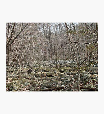 Devil's Potato Patch - Montgomery County - Pennsylvania Photographic Print