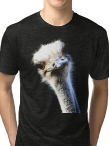 Ostrich Head Portrait Isolated on Black Tri-blend T-Shirt