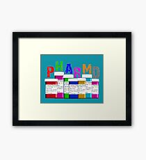 Pharmacist PharmD Prescription Bottles Framed Print