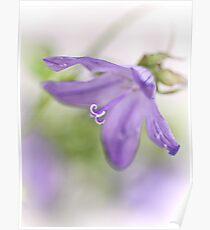 Dreamy flowers... II Poster