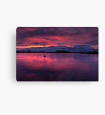 Rannoch Moor - sunrise Canvas Print