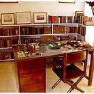 Hemmingway's library by IrisGelbart
