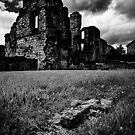 Monk Bretton Priory - June 2012 by Rory Garforth