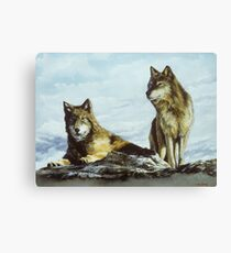 Above the Timberline Canvas Print
