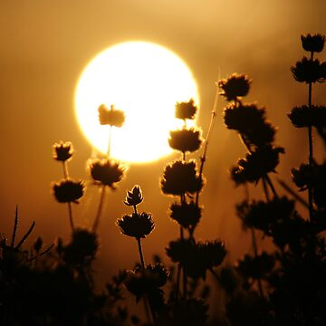 Sunset in Kos by KerovinBlack