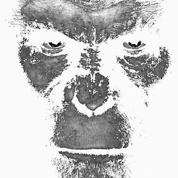 Ape Will Rise by sonicfan114