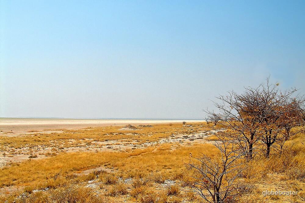 Etosha National Park by globeboater
