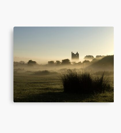 Phoenix rising out of the Mist Canvas Print