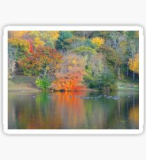 NATURE ALWAYS WEARS THE COLOR OF THE SPIRIT. Sticker