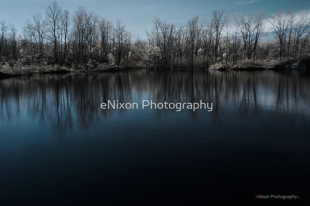 Hawk Island in Color-IR by eNixon Photography