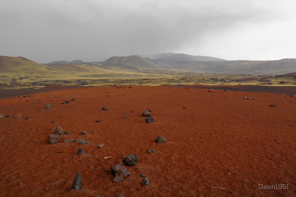 Argentina's '' RED CENTRE '' by Dawn1951