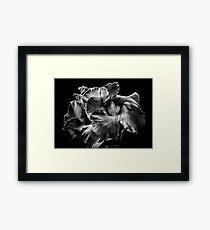 Backyard Flowers In Black And White 2 Framed Print
