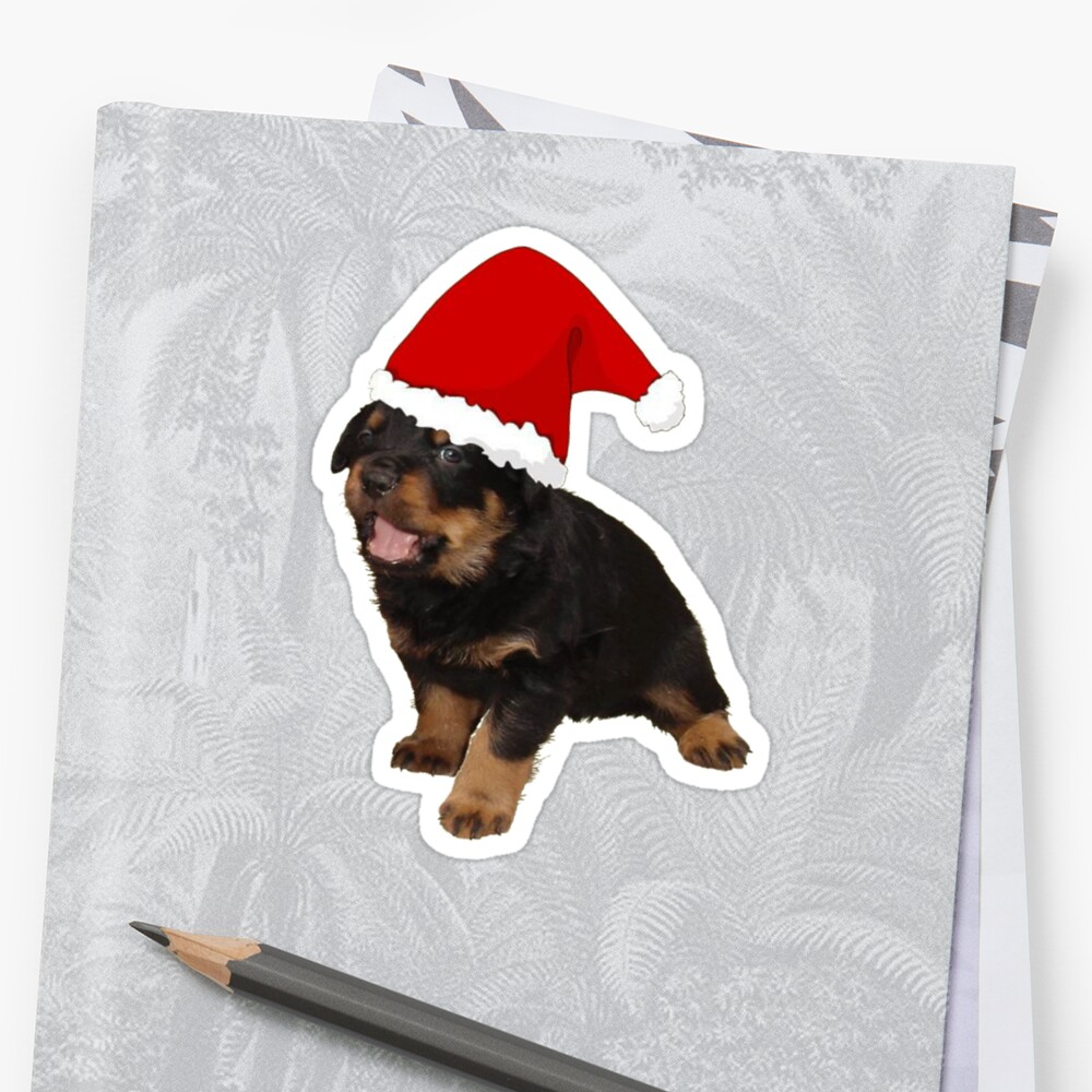 Cute Merry Christmas Puppy In Santa Hat by taiche
