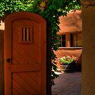 Canyon Road - Santa Fe by Mitchell Tillison