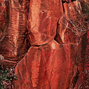 A very colorful rock art panel in Oregon by fnature