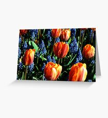 Tulips 12 Greeting Card