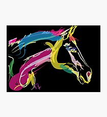 Horse-Lovely in colour Photographic Print