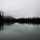 Morning Gloom by Justin Atkins