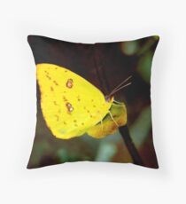 Sulphur. Throw Pillow