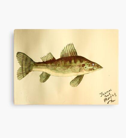 Walleye Canvas Print