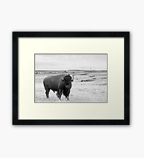Power of the Prairie Framed Print