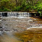 Mountain Stream. by Julie  White