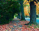 Leaf-Kickin' Stroll by Gene Walls