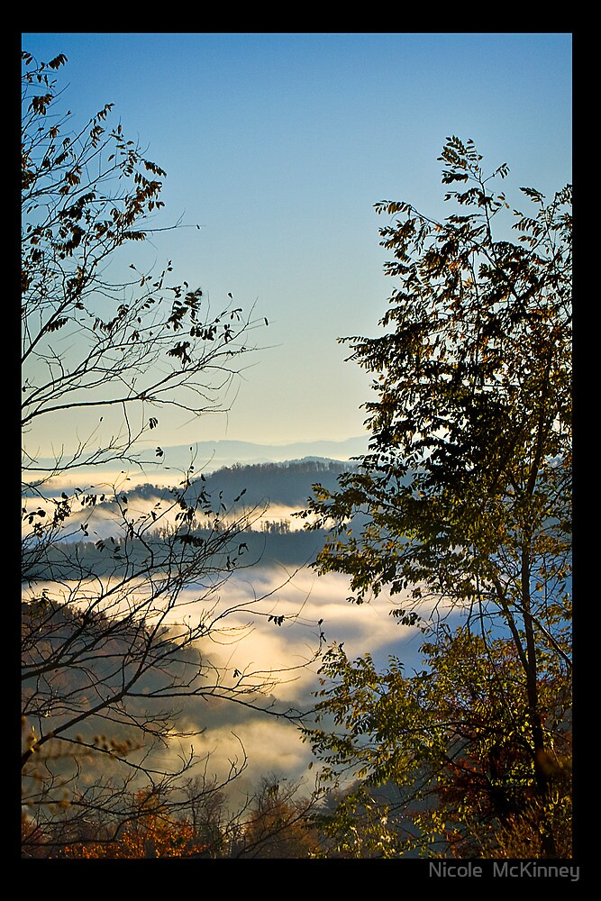 Chocolate Mountain In Aqua Fog by Nicole  McKinney